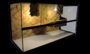 Waterschildpadden Terrarium